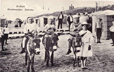 Eselreiten am Nordstrand